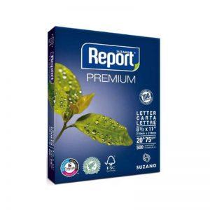 Report Carta 75GR